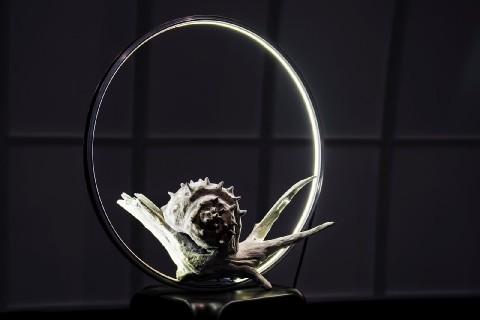Artisti in Luce, a Corato una mostra dedicata alla luce