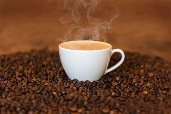 i musei del caffè